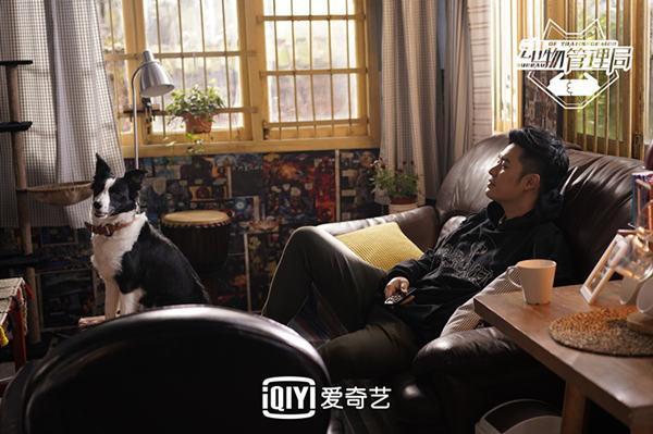 动物管理局第二季什么时候播出 陈赫王子文终极告白时刻