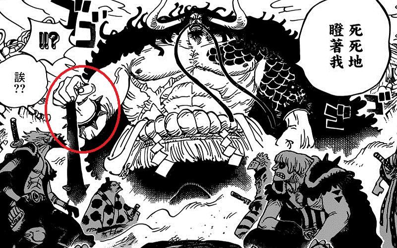 海贼王948话:Big Mom与凯多谈话,卡塔库栗的身世之谜被揭开