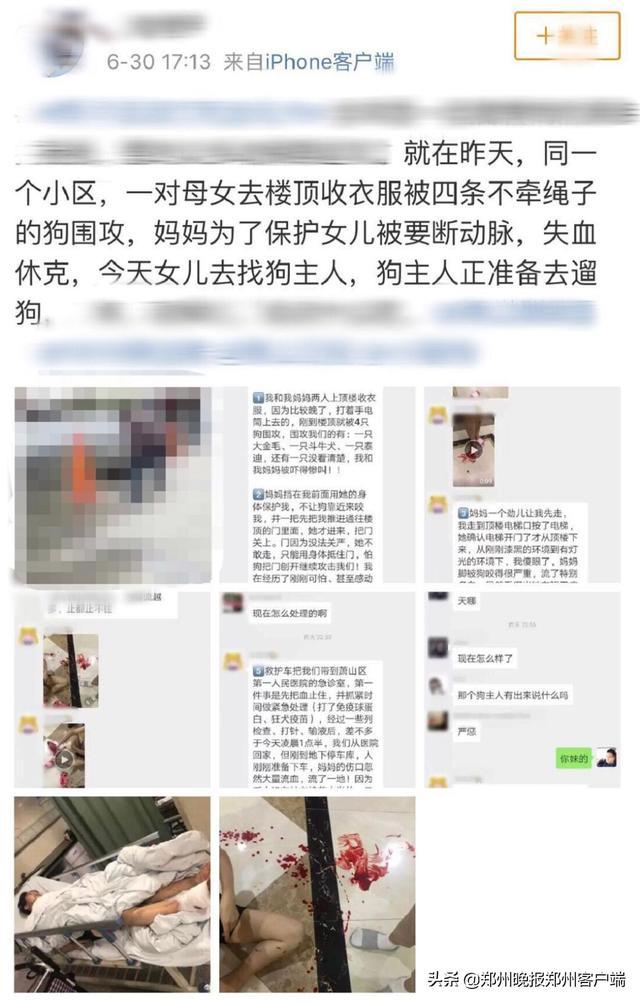 """杭州母女遭4条狗围攻,妈妈被咬到休克!狗主人站一旁称""""管不了"""""""