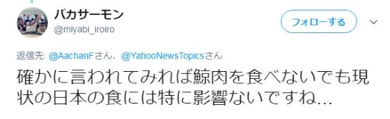日本开始卖鲸鱼肉怎么回事 日本时隔31年重启商业捕鲸