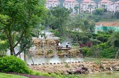 永春大力开展全城植绿 荒地变公园