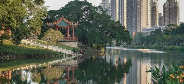 榕荫柳绿、流花叠影......福州这个公园逆天大变样!