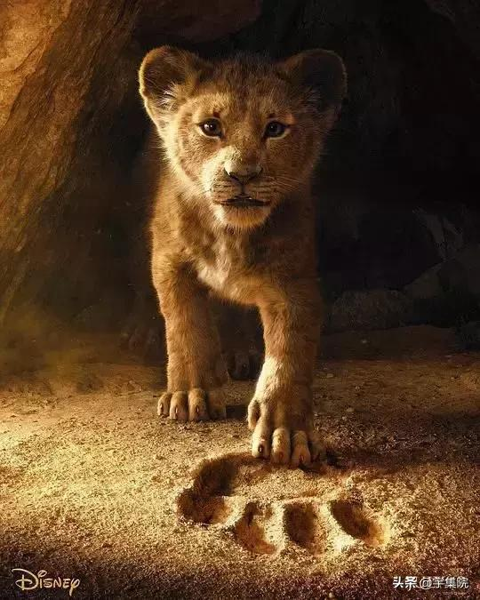 """""""真狮""""版《狮子王》,王者幕后的22个彩蛋"""