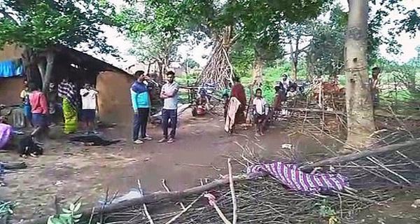 熟睡中被大象拽走怎么回事 印度一7岁女孩熟睡中被大象拽走踩踏至死