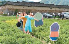 首屆兩岸花生節在福州舉行 閩臺農業交流開花結果