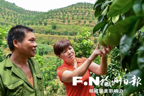 林巧清:助乡亲们钱袋鼓起来 帮乡村古厝活起来