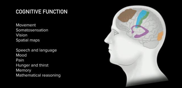 脑机接口系统是什么 脑机接口系统什么时候能实现?