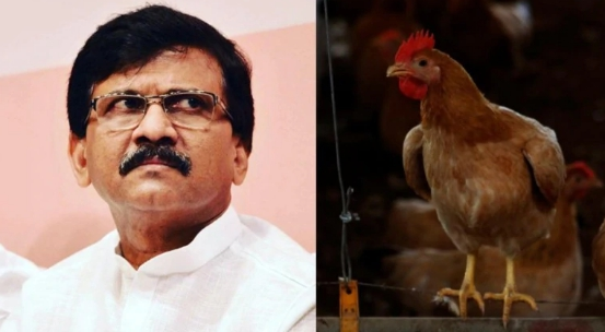 印把鸡肉列为素食怎么回事 鸡肉怎么算是素食的
