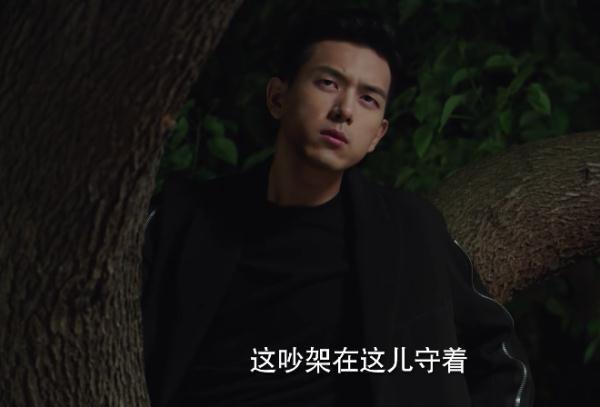 亲爱的热爱的:李现蹲在树杈上看杨紫被抓包 虐妻一时爽追妻火葬场
