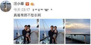 汪小菲儿子正面照首曝光,网友大呼太像爸爸了