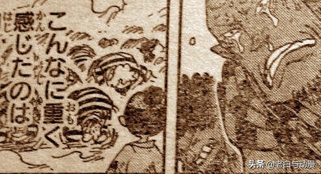 海贼王漫画950话战士们的梦鼠绘汉化 海贼王950话情报最新
