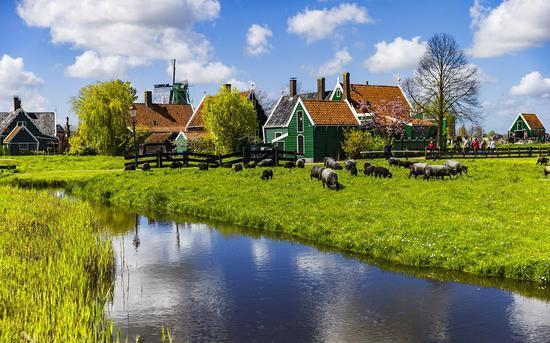 荷兰教育另类传统 找个深夜把小孩丢到森林里