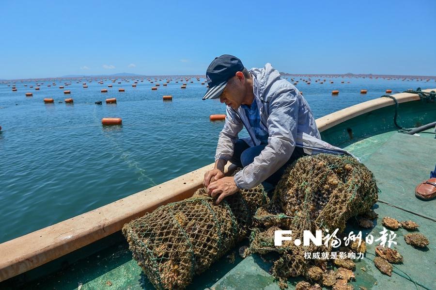 连江生态产品市场化改革试点取得突破