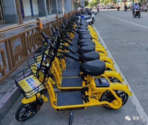 480辆松果电单车落户泰宁,成文明出行新风尚!