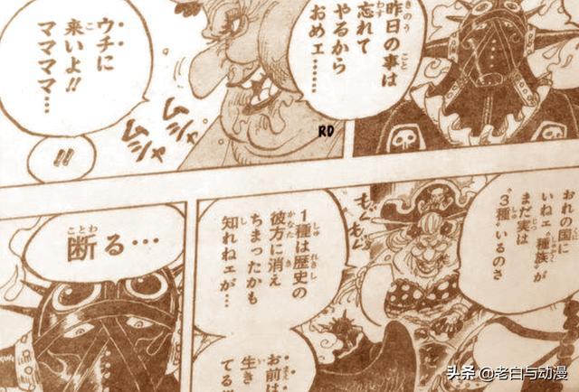 海贼王951话:大妈VS凯多 霍金斯将有大动作 海贼王951话鼠绘汉化完整版