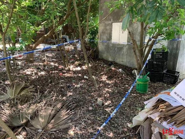 4岁男童被打晕沉塘致死 邻居七旬太婆涉嫌故意杀人被刑拘
