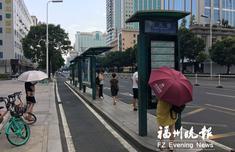 """福州状元境公交站乘客希望添""""绿伞"""" 园林部门回应"""