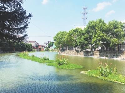 莆田因地制宜 呵護木蘭溪水質使之清上加清