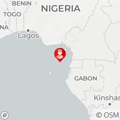 喀麦隆海岸发生海盗袭击事件 外媒称9名中国船员被绑架