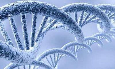 李嘉诚向科大捐款5亿,成立合成生物学研究院