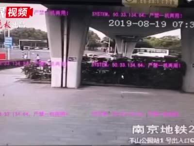 野猪闯进南京地铁站被吓跑 网友:这只猪我认识