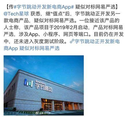 字节跳动开发新电商App 官方回应仅是锤子线上官网