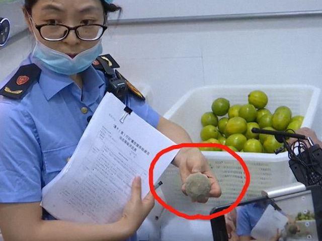 CoCo查出腐烂水果 对其给予警告处理