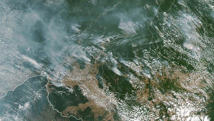 亚马逊雨林大火什么情况 毁木伐林或为火灾频发元凶
