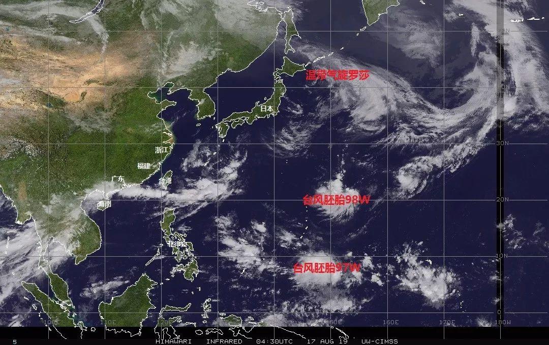 第11号台风白鹿最新实时路径图 台风白鹿几级在哪里了,台风白鹿最新消息