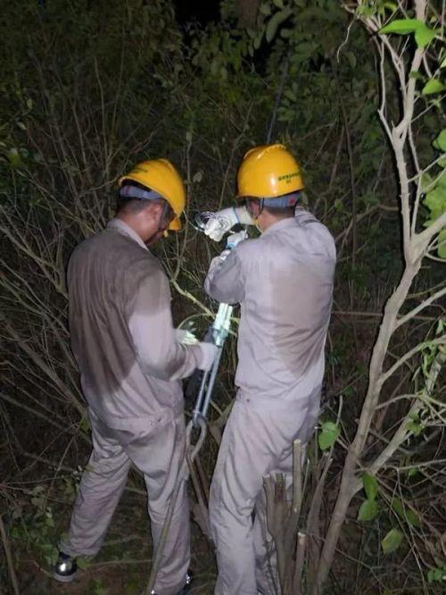 8月23日晚8时,国家电网莆田供电公司员工正在处置110千伏石峤Ⅰ路#39主拉线部分损伤的重大隐患,确保线路台风期间安全运行。(潘建文)