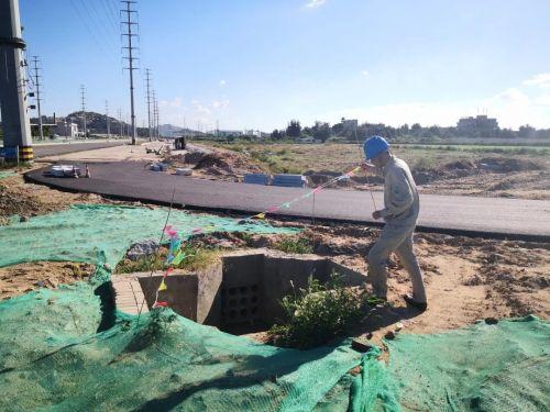 8月23日下午,国家电网泉州石狮市供电公司组织人员清除线路走廊下布条。(许伟哲 葛建伟)