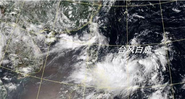 台风白鹿登陆福建将在广东再次登陆 11号台风白鹿最新实时路径图