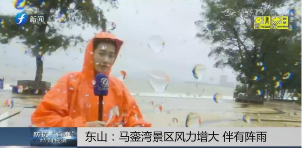 2019台风路径实时发布系统 11号白鹿实时路径图 台风白鹿已离开福建!