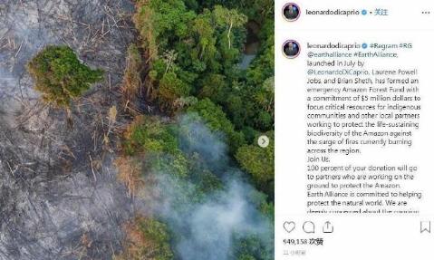"""""""小李子""""莱昂纳多为亚马逊雨林捐款500万美元"""