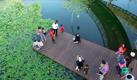 福州推进城区水系综合治理提升民众幸福感