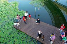 """""""活""""水兴榕城——福州推进城区水系综合治理提升民众幸福感"""