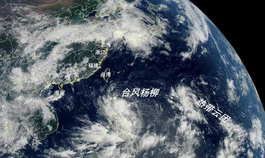 台风杨柳30日或登陆海南 2019台风最新消息 台风杨柳路径概率预报图