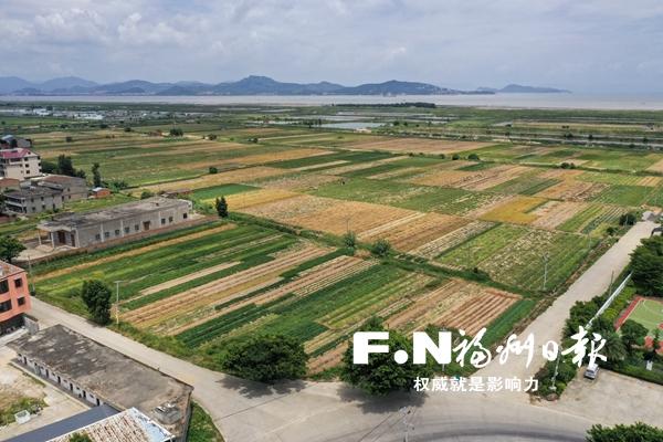 福州市完成20宗建设用地项目表土剥离