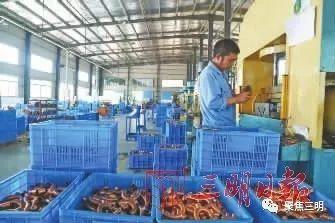 三明建宁县:机电产业园生产火热