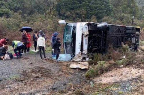 新西兰一大巴翻车最新消息5人遇难 新西兰一大巴翻车原因是什么?