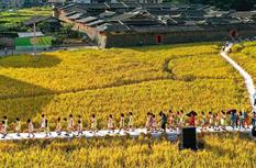福州永泰:耕讀傳家 莊寨里話豐年
