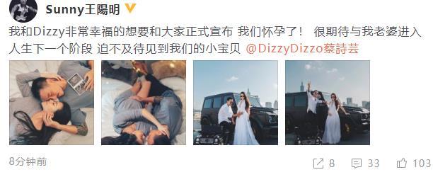 王阳明老婆怀孕几个月了?王阳明老婆蔡诗芸个人资料