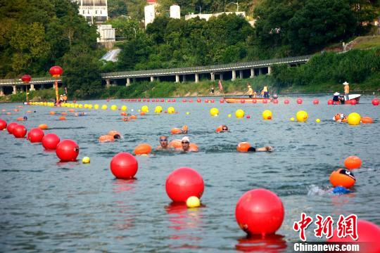 """两岸泳者""""客家母亲河""""汀江水域角逐竞技。 龚雯 摄"""