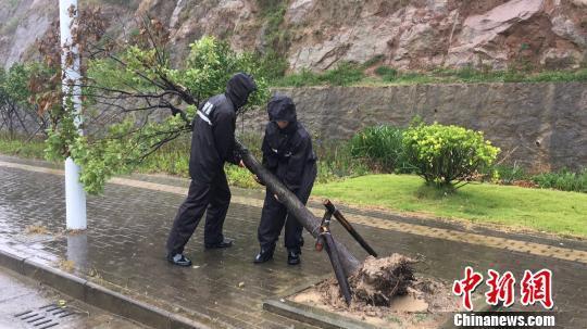 台风米娜逼近浙江最新消息,米娜台风最新路径目前哪里了?