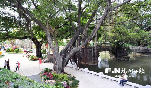 福州台江打铁港公园开园迎客 打造特色梅林景观