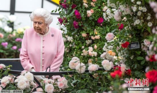 """英女王称政府当务之急是10月底""""脱欧"""""""