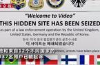全球最大儿童非法视频暗网被捣毁:利用比特币销售25万段儿童非法视频