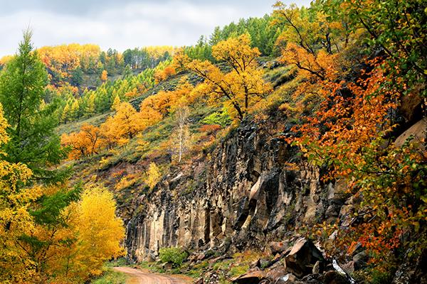 上半年全國森林旅游游客量達9億人次 同比增14%