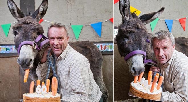 史上最高龄驴大寿具体什么情况 史上最高龄驴图片曝光
