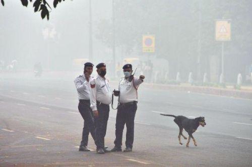 印度首都毒气室怎么回事?印度首都为什么宛如毒气室现场图曝光